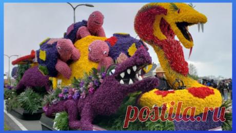 Самый большой цветочный парад в мире | Марина Жолобова | Яндекс Дзен
