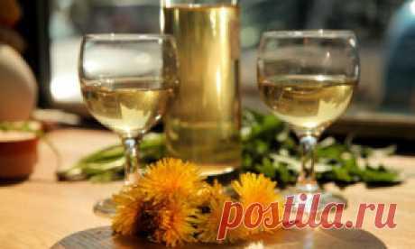 Вино из одуванчиков: пошаговые рецепты приготовления с фото