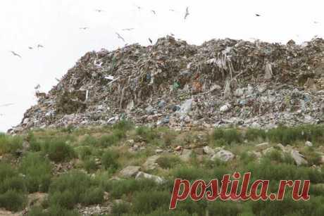 Москва собирается вывозить свой мусор в Крым. | Крым сегодня | Яндекс Дзен