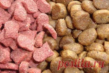 Ошибки в хранении сухого корма для собак | Рекомендательная система Пульс Mail.ru