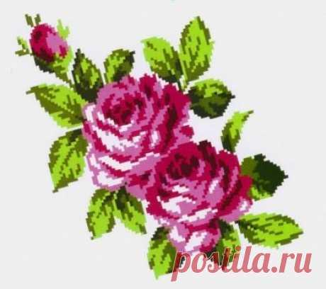 K304 Букет роз купить, скидка 30%, распродажа 2018. Фото