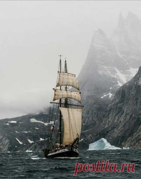 #Гренландия@discoverygroup