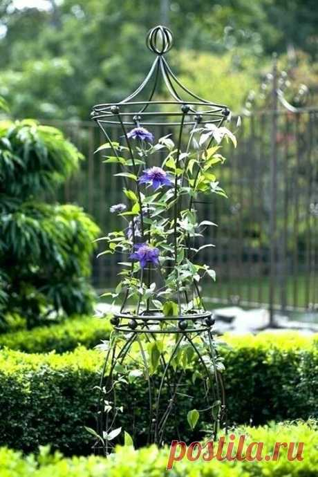 Дизайн сада: идеи опор для вьющихся растений   Сад Анны Гауэр   Яндекс Дзен