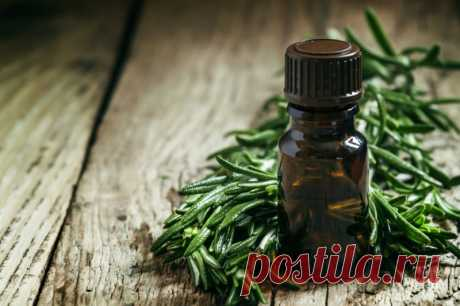 15 ways to use oil of a tea tree in life — Useful tips