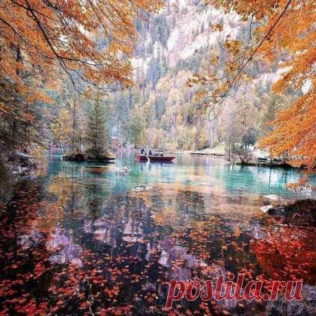 Краски осени---  «Зазеркалье залива, небо ярче огня». Изумительно Чудо природы!👍Все краски осени в одном пейзаже , неимоверная красота , просто невозможно оторвать взгляд Сергей Есенин Вот оно, глупое счастье С белыми окнами в сад! По пруду лебедем красным  Плавает тихий закат. Здравствуй, златое затишье, С тенью березы в воде! Галочья стая на крыше Служит вечерю звезде.