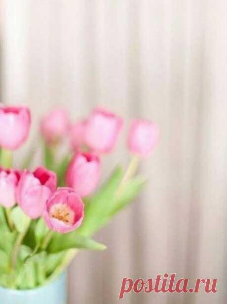 Очаровательные, Милые, Прекрасные с 8 Марта Вас! С чудесным женским праздником Красоты, Весны и Любви!   Пусть сегодня у Вас в сердце поселится радостное, весеннее настроение, и останется там на весь год. Пусть исполняются желания, надежды и мечты. И пусть ваши близкие радуют Вас каждый день своей нежностью, вниманием, заботой и любовью.
