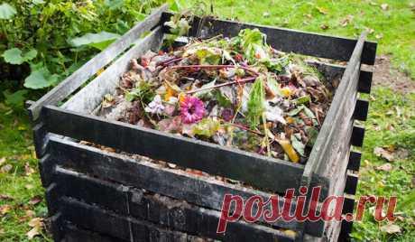 Ошибки, делающие компост бесполезным и вредным удобрением | Дачный труженик | Яндекс Дзен