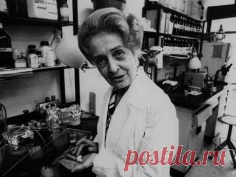 Секрет долголетия Риты Леви-Монтальчини, нобелевского лауреата, дожившей до 103 лет