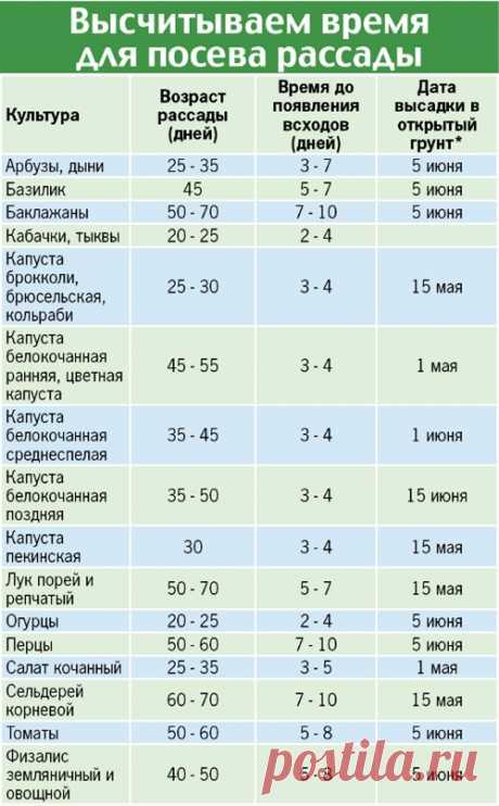 Рассадная считалочка - Садоводка