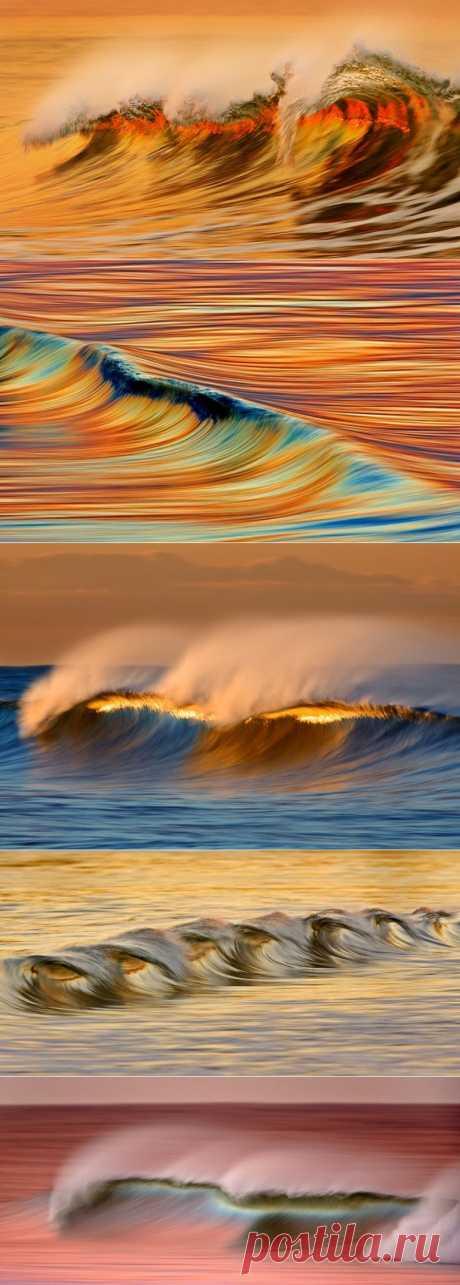 Золотые волны Калифорнии / Туристический спутник