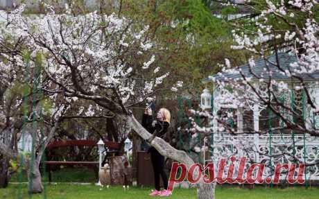 Новоспасский монастырь - усыпальница Романовых - православные монастыри в Москве