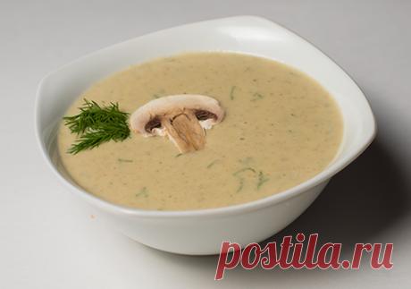 Французский грибной суп-пюре: с курицей, хлебом, яйцом и сливками