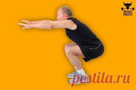Что дадут приседания по 100 раз в день мужчинам за 40, 50 лет   Muscle Project   Яндекс Дзен