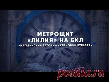 «Лилия» под землей: история метрощита — Комплекс градостроительной политики и строительства города Москвы