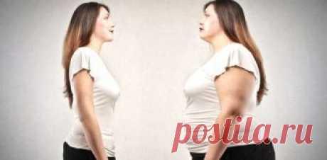 Гормоны и лишний вес. Часть 2 — Фитнесомания для каждого!
