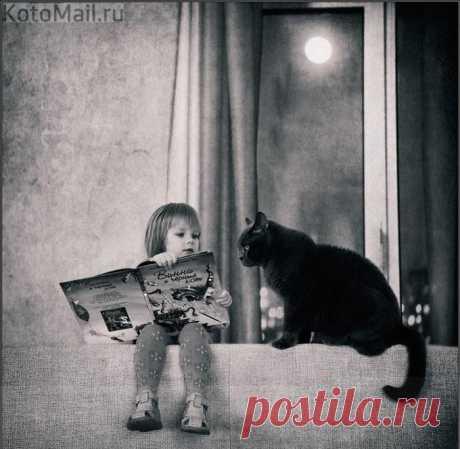 Сказки читают, чтоб снились сладкие сны...