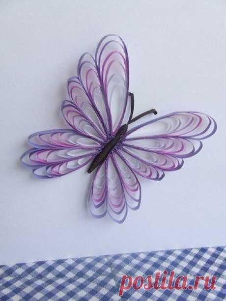 Бабочка для открытки в технике квиллинг