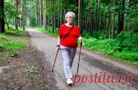 Дешевле всего в РФ заниматься скандинавской ходьбой, йогой и баскетболом | Спорт