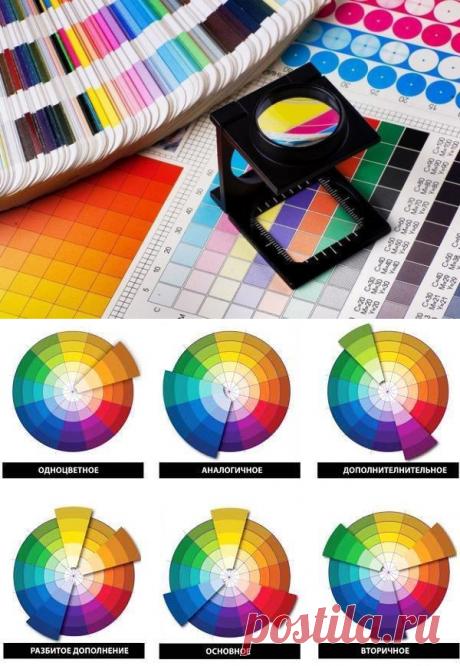 Как выбрать цвет для интерьера: 10 полезных советов | Свежие идеи дизайна интерьеров, декора, архитектуры на InMyRoom.ru