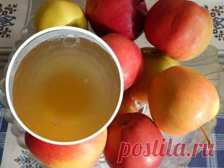 Делаем яблочный уксус из свежего урожая: два простых рецепта. Очень полезный уксус, рекомендуем всем! — Копилочка полезных советов