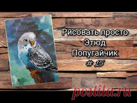Как нарисовать попугая этюд № 15 гуашь