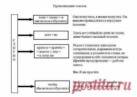 Освежаем в памяти главные правила русского языка — Полезные советы
