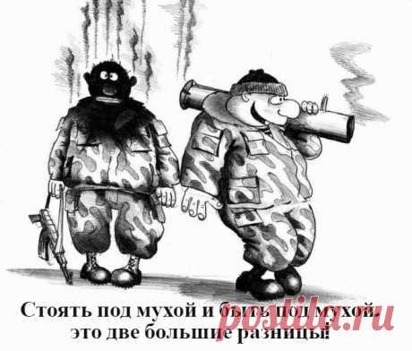 Анекдоты в картинках: Эпизод №58 | solegol.com💰💰💰 | Яндекс Дзен