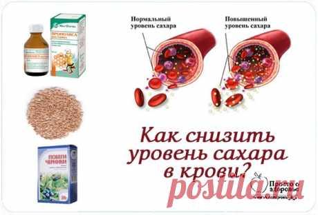 Как снизить уровень сахара в крови? Здоровье — все новости (вчера, сегодня, сейчас) от 123ru.net