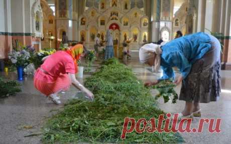 Целебные Травы на Троицу, которые обязательны должны быть в твоем доме — Бабушкины секреты