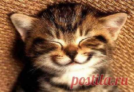 """Медитация """"Внутренняя Улыбка"""" - От стресса к счастью! Медитация Чиа Мантек Внутренняя улыбка поможет зарядиться энергией на целый день и восстановить гаромнию Души и Тела"""