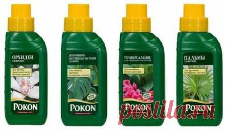 Удобрение Pokon (Покон) - инструкция по применению Pokon (Покон) – это комплексные минеральные удобрения для цветущих садовых и любых комнатных растений, хвойных пород, газона и овощей. Препарат выпускается в различных формах, удобных для подкормки: гранулы, палочки, таблетки, спрей и концентрат. Содержит все необходимые для развития и роста вещества. Обладает продолжительным сроком действия. Удобрив средством один раз, вы обеспечиваете растительность питательными элементами на 3-6 месяцев.