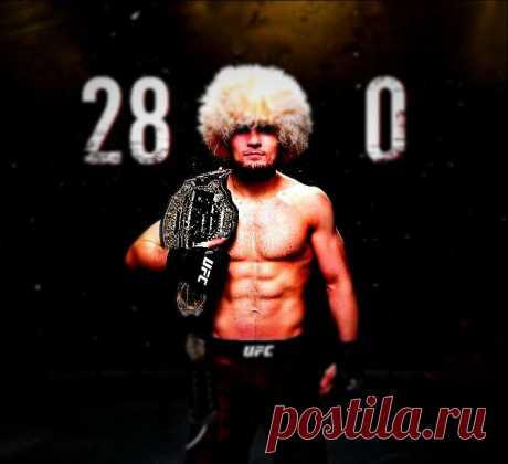 Насколько силен Хабиб Нурмугамедов и другие российские бойцы смешанных боевых искусств. Показатели впечатляют | fitnechannel | Яндекс Дзен