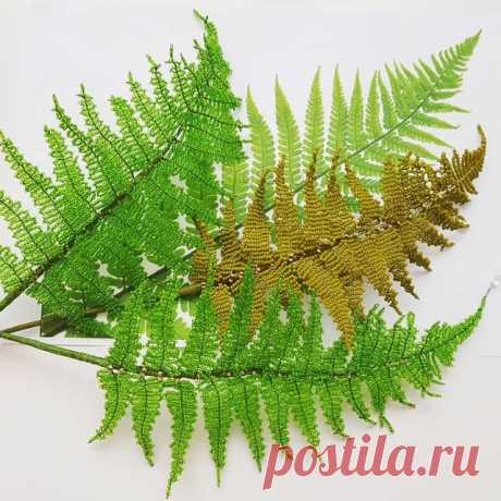 🇺🇸 #BeadedFern 🌿🌿🌿 💡 While working on beaded fern, I came up with a brand new technique! ☝️🤓🔥 Neither French, nor Victorian, so probably Russian? 😜 📎P.S.: Needless to say, I'm going to make a PDF master class on beaded fern and my new technique, as I've already got plenty of requests! ✔ If you want it too, ❤ it! __________🖋 🇷🇺 #ПапоротникИзБисера 🌿🌿🌿 💡 В процессе создания папоротника из бисера мне удалось изобрести абсолютно новую технику: ни французскую, ...
