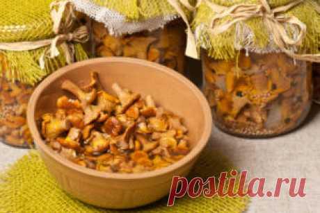 Лисички на зиму рецепты с фото