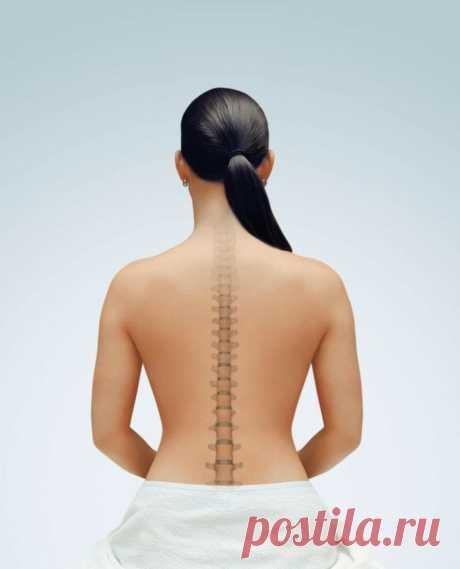 6 упражнений на все мышцы, которые заменят поход к массажисту. | Идеальная | Яндекс Дзен