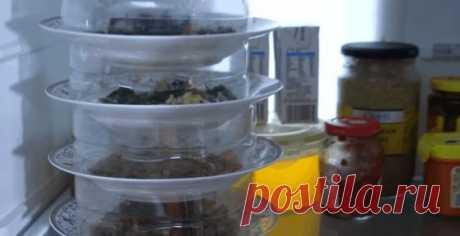 Вторичное использование пластиковой бутылки: удобный способ хранить множество порционных закусок или салатов перед приемом гостей