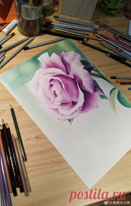 Рисуем розу