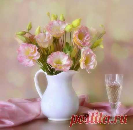 Натюрморты Эустома - роза любви