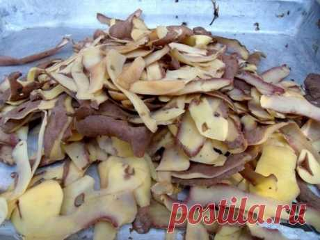 КАРТОФЕЛЬНЫЕ ОЧИСТКИ - ЛУЧШЕЕ УДОБРЕНИЕ ДЛЯ СМОРОДИНЫ.  Картофельные очистки — источник крахмала, который так нравится смородине, что ее ягоды становятся величиной с вишню. Хотите получить отличный урожай смородины? Не поленитесь за зиму насушить картофельной кожуры. Очистки отлично сохнут на батарее или просто разложенные в один слой на подоконнике, в сухом виде их лучше всего хранить в тканевых мешках. В течение весенне-летнего сезона сухие картофельные очистки можно зак...