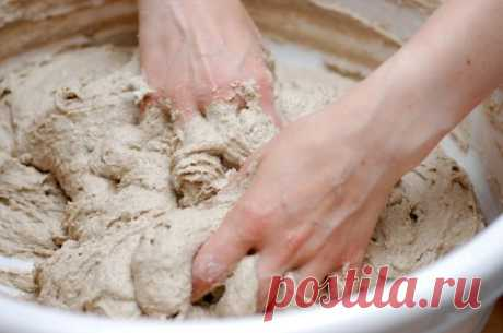 Из хмеля и картофеля. Как приготовить дрожжи и закваски в домашних условиях.