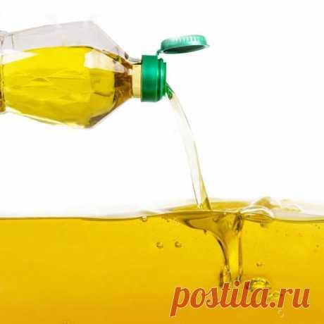 Подсолнечное масло: польза или вред для сосудов?