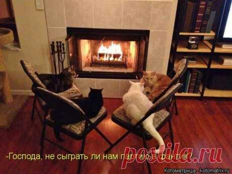 Заседание диреккотов:)