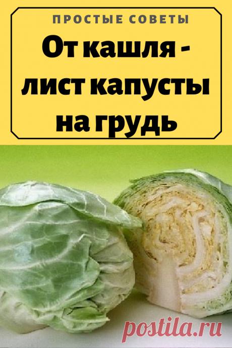 От кашля – лист капусты на грудь – Простые советы