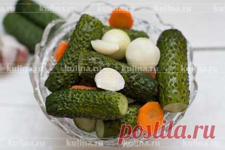 Бомбические малосольные огурцы – рецепт приготовления с фото от Kulina.Ru