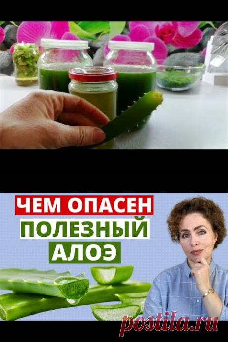 """Алоэ// Эликсир молодости Рецепт моей бабушки """"Витаминная бомба"""" - YouTube"""