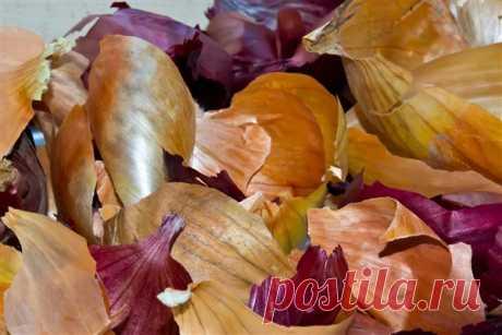 Луковая шелуха – это уникальное природное средство Луковая шелуха – это уникальное природное средство для борьбы с вредителями и отличное удобрение для растений. Кроме того, с помощью нее можно эффективно утеплять грядки. Повышаем урожайность Отваром луковой шелухи для повышения урожайности можно поливать огурцы, кабачки, цуккини, морковь, картоф