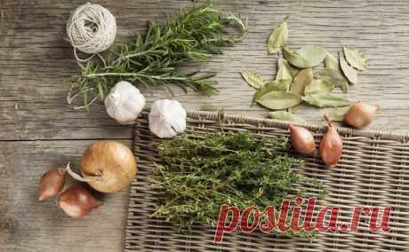 Прованские травы: как составить «букет гарни» — Субботний Рамблер