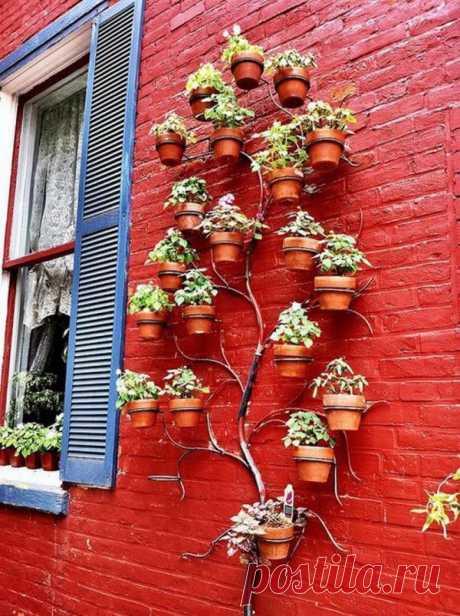 Las ideas para el jardín vertical en dachke