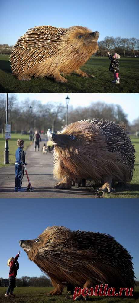 Гигантский ёж в парке Лондона | Краснодеревщик