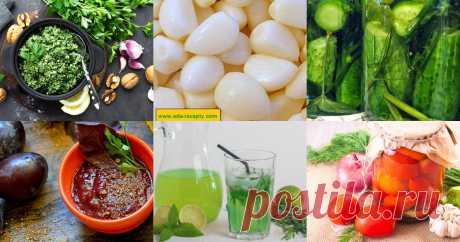 Тархун, эстрагон - 49 рецептов приготовления пошагово - 1000.menu Тархун, эстрагон - быстрые и простые рецепты для дома на любой вкус: отзывы, время готовки, калории, супер-поиск, личная КК